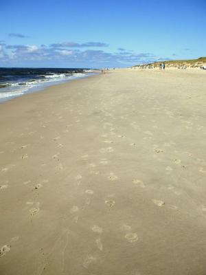 Herrlich sauberer Sandstrand... (Sylt) (© Gisela Perlwitz | Benefeld)