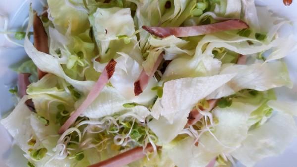 Salat-mit-Sprossen-undKlettenwurzelpickle