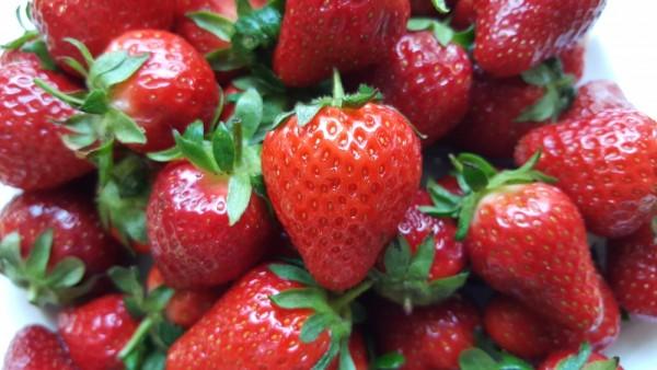 Erdbeeren5baa65418b559